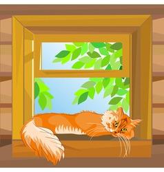 Cat on windowsill vector