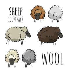 isolated sheep herd icons vector image