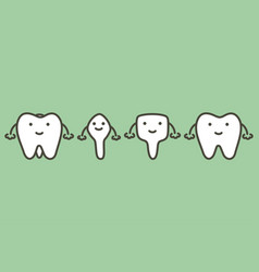 Tooth type vector