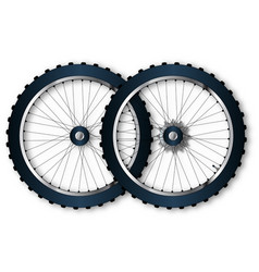Two bicycle wheels vector