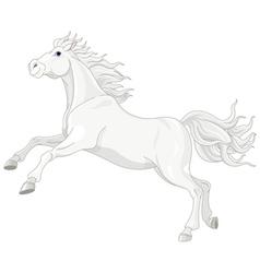 Beautiful white horse vector