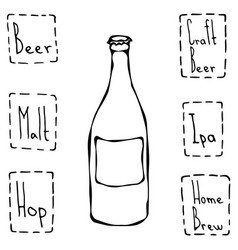 craft beer bottle hand drawn vector image