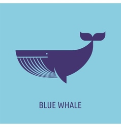 whale icon on the blue baground vector image vector image