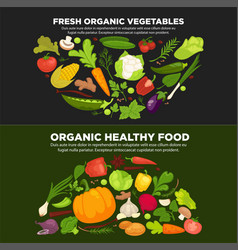 healthy organic food promotional poster with fresh vector image