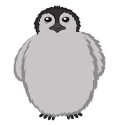 Penguin baby cute cartoon vector