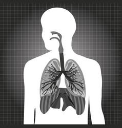 Human system respiratory vector