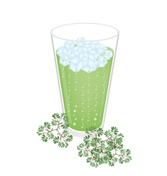 A Glass of Green Tea with Ice Cube vector image