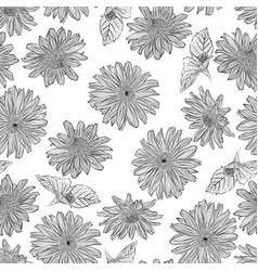 Pattern with heliopsis vector