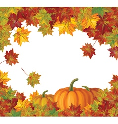 Pumpkin autumn vector