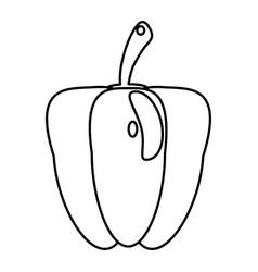 pepper food healthy image outline vector image