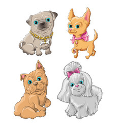 dogset vector image