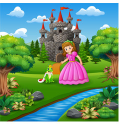 A beautifull fairytale princess and the frog princ vector