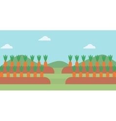 Background of carrots growing on field vector image