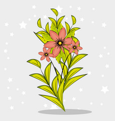 beautiful colorful flowers design vector image vector image