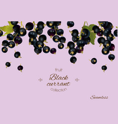 Black currant banner vector