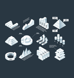 graphic isometric infographic business diagram vector image