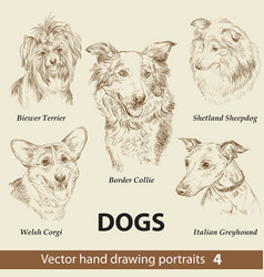 set hand drawing dogs 4 vector image