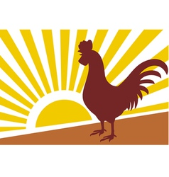 rooster and morning sun vector image vector image