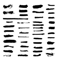set of grunge paint strokes vector image vector image