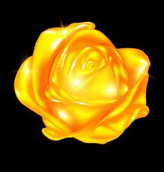 Abstract golden rose vector