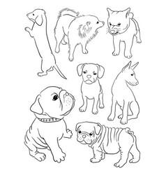 dog line art vector image