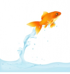 Goldfish leaping out of water vector