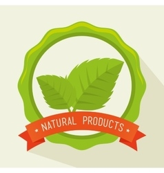 Green nature and leaves design vector image