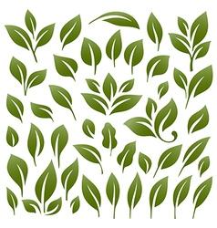 Leaves 2 vector