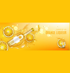Orange liqueur bottle shot glass and fruit slices vector