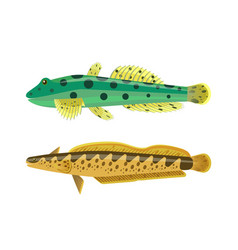 Rainbow trout with green fish vector