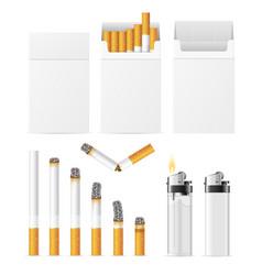 realistic cigarette and accessory set vector image