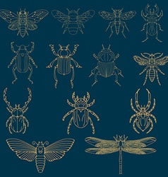 Set of the insects design elements vector