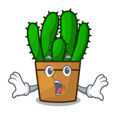 Surprised spurge cactus plant isolated on mascot vector