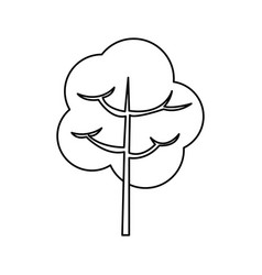 Tree branch stem trunk natural line vector