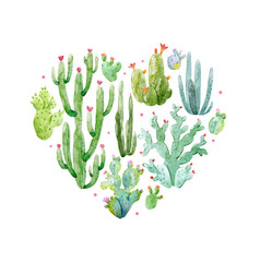 Watercolor cactus heart composition vector