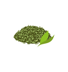 leaf tea flat isolated vector image vector image