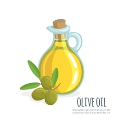 Bottle of olive oil and branch vector image
