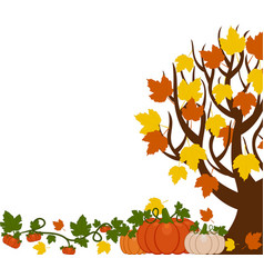 a fall tree with leaves orange vector image