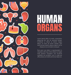 human organs banner or landing page template with vector image