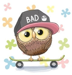 Owl with skateboard vector image