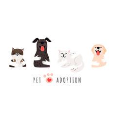pet adoption vector image