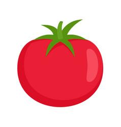 raw tomato icon flat isolated vector image
