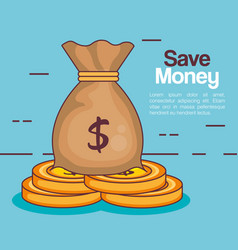save money bag icon vector image