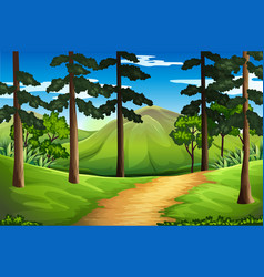 Scene with tall trees and mountain vector