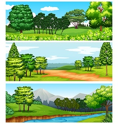 Three scenes of forest and fields vector
