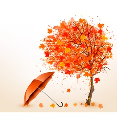 Autumn background with autumn leaves and red vector image