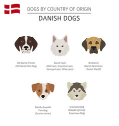 dogs by country of origin danish dog breeds vector image