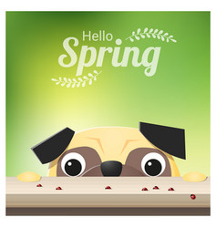 Hello spring season background with pug dog vector
