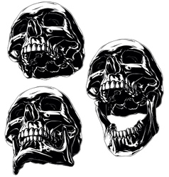 High detailed cool black human skull set vector image