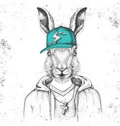 hipster animal rabbit dressed in cap like rapper vector image